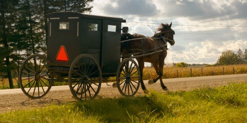 Mennonite buggy in the Township of Woolwich, Ontario