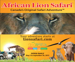African Lion Safari July