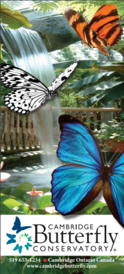 Cambridge Butterfly Conservatory Brochure Front
