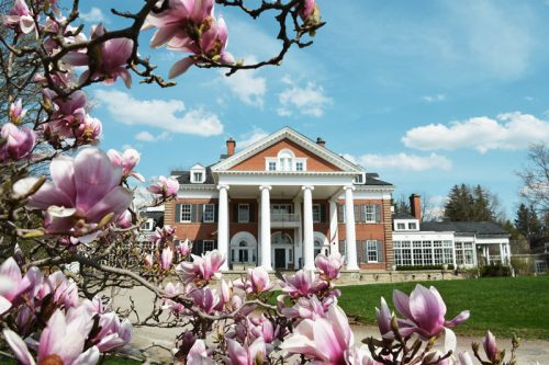 Shot of the exterior of Langdon Hall through a cherry blossom tree in the spring