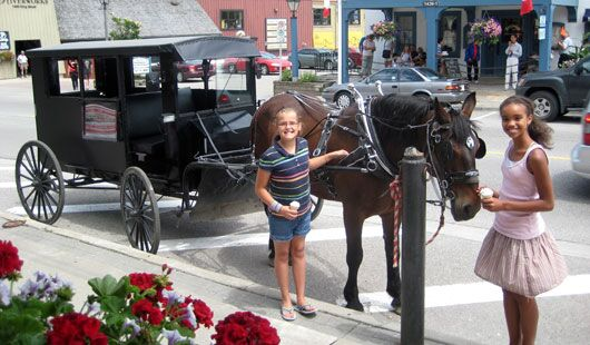 boy and girl standing beside a Mennonite horse and buggy at St. Jacobs Horse Drawn Tours