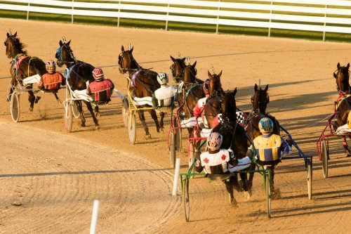 Horse races at grand river raceway