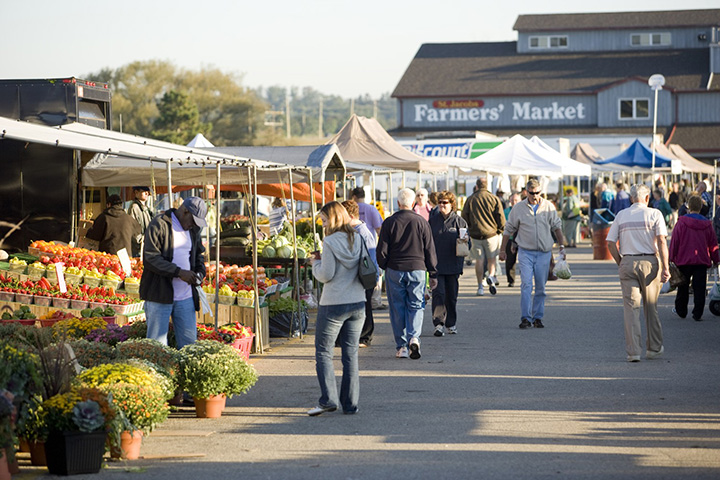 Local Chefs Explore The Best Fall Food Grown in Waterloo Region