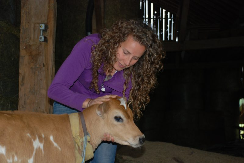 Melissa Baer of Vibrant Farms with a cow