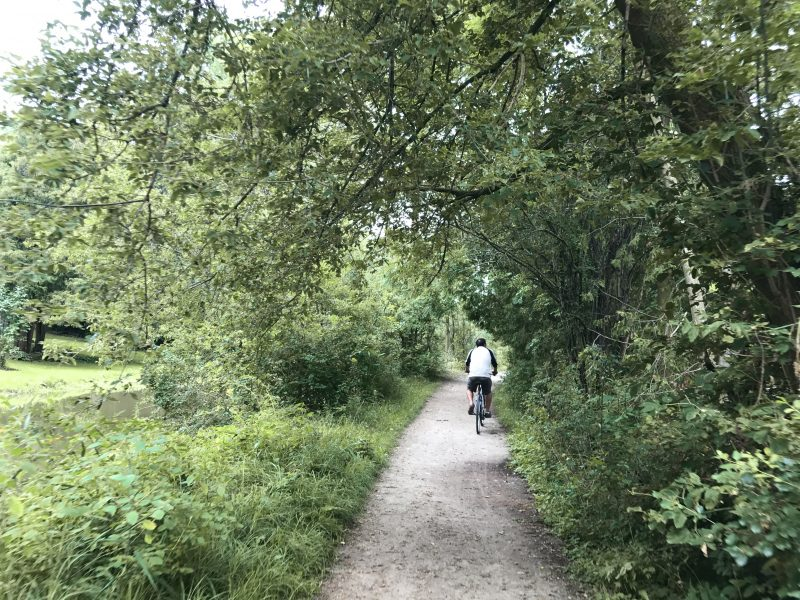 Man cycling through forested path
