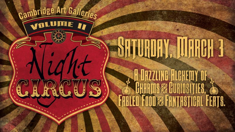 Banner for Night Circus at Idea Exchange