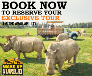 African Lion Safari June 2018