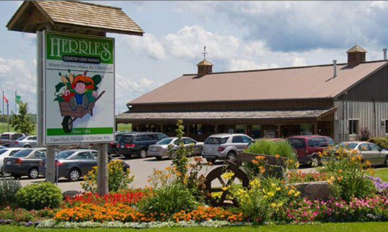 outdoor view of Herrle's Country Farm Market