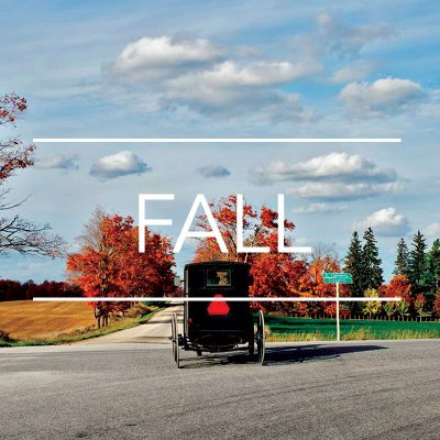 Mennonite horse and buggy driving down road in the fall with red trees - Things to do in Waterloo Region - Fall