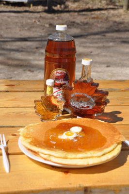 st. jacobs horse drawn tours, maple syrup tours st. jacobs, maple syrup tours waterloo region, sugar bush tours st. jacobs, sugar bush tours waterloo region