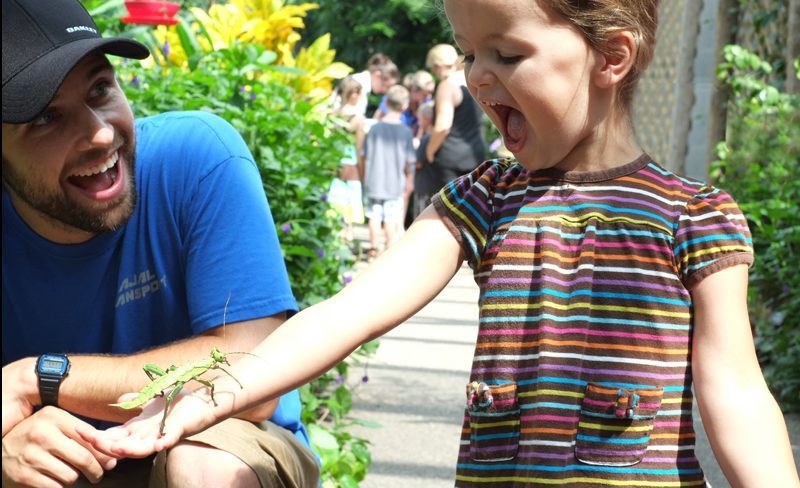 A kid holding a bug at Cambridge Butterfly Conservatory