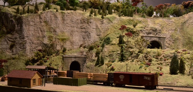 Model trains at the St. Jacobs and Aberfoyle Model Railway 1