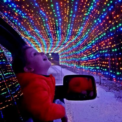 holiday, lights, Bingemans, family fun, things to do