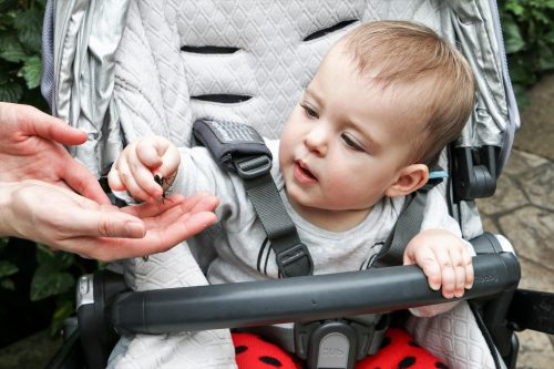 Cambridge Butterfly Conservatory - baby with a bug