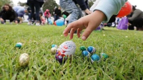 Eggs, Eats and Earth Day: What's On for Easter 2019!