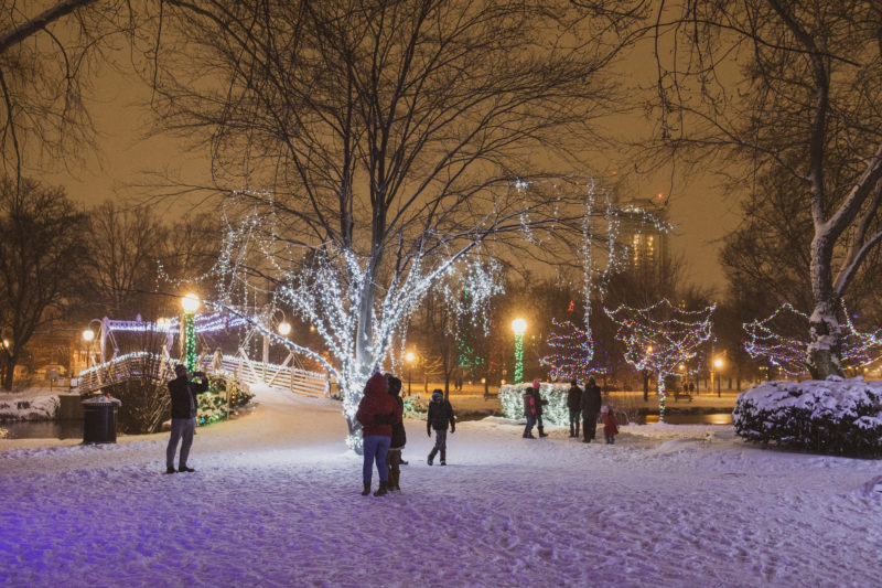 people observing the light installations on a winter's night in Victoria Park in Kitchener