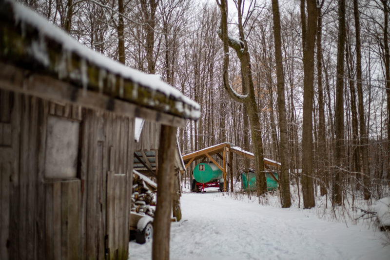 A sugarbush cabin located in a bush in Woolwich Township with snow on the ground and bare trees surrounding it