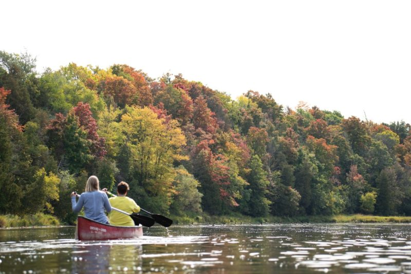 two females in a canoe on the Grand River in the fall: the greens along the river are just starting to turn colours